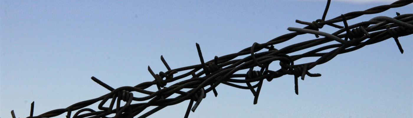 barbed-wire-971458_1920